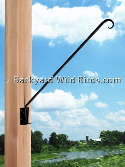 Wrought Iron Swivel Arm Bracket At Backyard Wild Birds Humming
