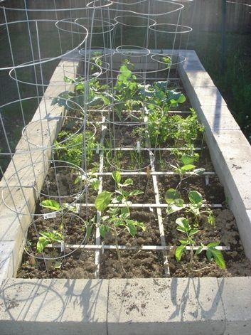 Cinder block raised garden bed. Also, see http://bit.ly/ih2w5O