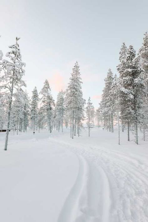 The Northern Lights Village And Star Arctic In Lapland, Finland