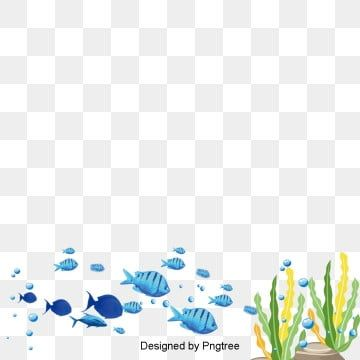 Cartoon Hand Painted Underwater World Design Aqua Organism Fish Png Transparent Clipart Image And Psd File For Free Download In 2020