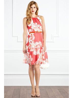 Coast Suzy printed dress Multi-Coloured - House of Fraser