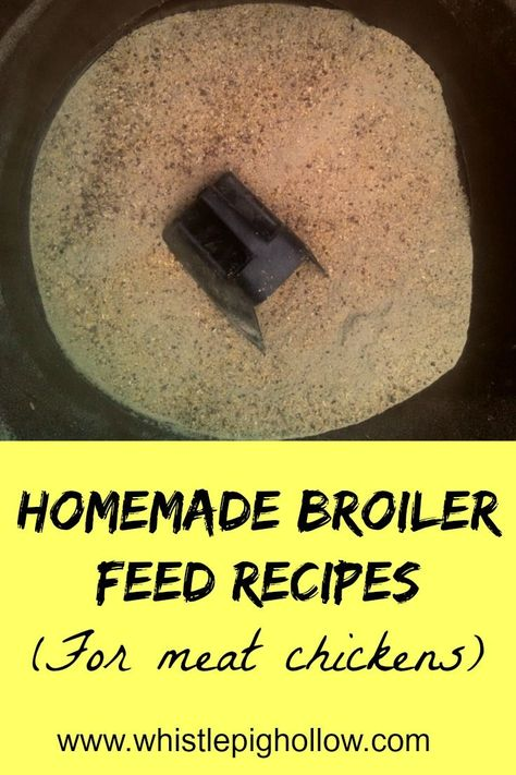 Homemade Broiler Feed Recipes Whistle Pig Hollow Raising
