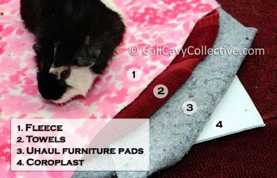 how to use fleece bedding in your guinea pig cage