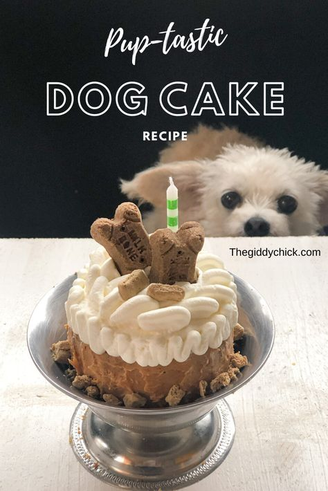 dog cake recipe Celebrate your furry friend by baking them their very own birthday cake. This simple to make recipe is sure to please! Easy Dog Cake Recipe, Dog Cake Recipes, Dog Biscuit Recipes, Dog Treat Recipes, Dog Food Recipes, Dog Cake Recipe Peanut Butter, Cake Dog, Puppy Cake, Dog Cakes