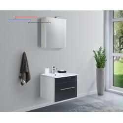 Wcinrichting Masse Waschtischunterschrank B H T 59 48 45 5 Cm Hohe Des Waschbeckenschranks Inkl Waschbecken 49 7 Cm Waschbecken B T 61 5 In 2020 Wc Inrichting
