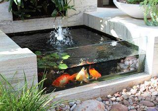 Cara Membuat Kolam Ikan Kecil Cara Membuat Kolam Ikan Minimalis Contoh Kolam Ikan Minimalis Kolam Ikan Hias Depan Rumah Kolam Ikan Koi Kolam Ikan Ide Berkebun
