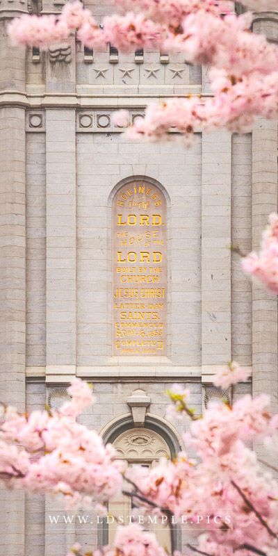 10 Spring Pictures of the Salt Lake Temple You Haven't Seen Yet - LDS Temple Pics Lds Temple Pictures, Pictures Of Christ, Church Pictures, Lds Pictures, Mormon Temples, Lds Temples, Salt Lake City, Later Day Saints, Salt Lake Temple