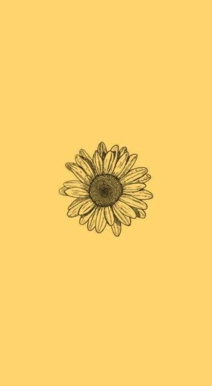 Yellow Aesthetic Wallpaper Iphone Yellow Aesthetic Wallpaper Yellow Aesthetic Wallpap Sunflower Wallpaper Iphone Wallpaper Yellow Yellow Aesthetic Pastel