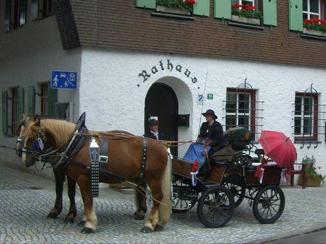 Die Kutsche. Die Kutschen.  Genauer: Die Pferdekutsche. Die Pferdekutschen.  Die Kutsche steht vor dem Rathaus.