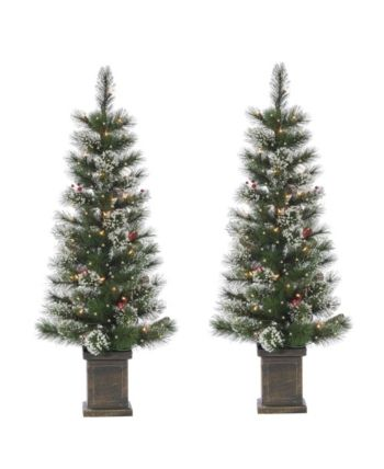 Sterling 4ft Potted Hard Mixed Needle Loveland Spruce With Iced Tips Pine Cones Red Berries And 50 Clear White Lights Set Of 2 Reviews All Holiday Lane Home