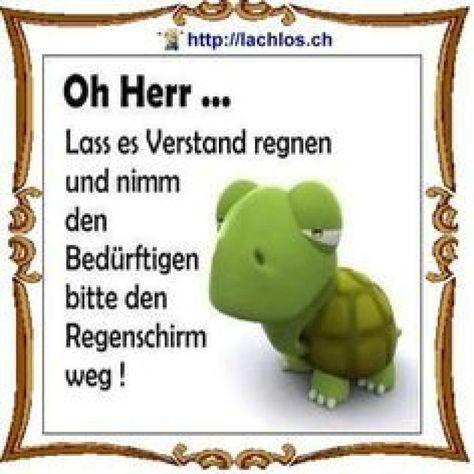 lustige sprüche whatsapp neu - #himmel #lustige #neu #Sprüche #WhatsApp