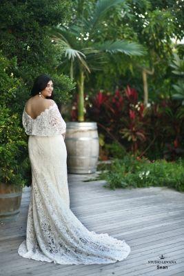 Boho Dreams-Plus size wedding gowns in 2020   Plus wedding ...