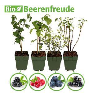 Mein Schoner Garten Bio Pflanzen Set Beerenfreude In 2020 Pflanzen Weintrauben Erdbeeren Pflanzen