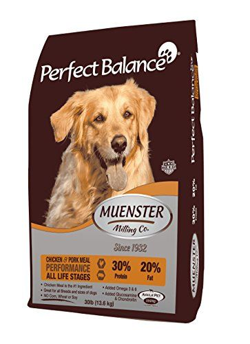 Cheap Muenster Milling Co Perfect Balance Performance Dog Food