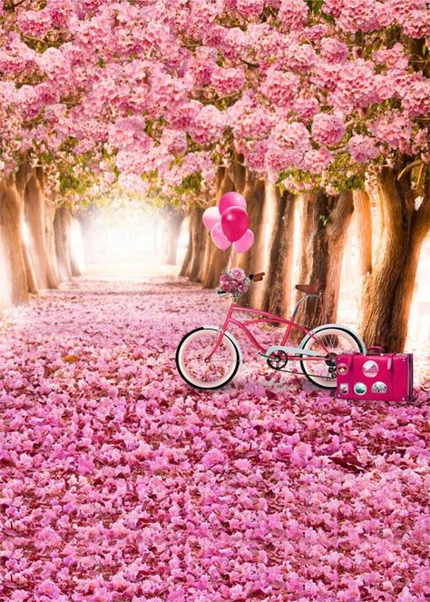 Pink Trees Flowers  Spring Blossom Photography Backdrop S-598