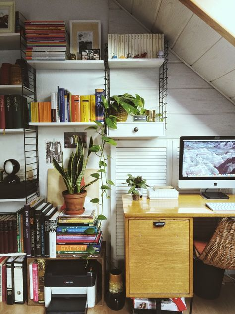 Urban Jungle Bloggers: Plants on the Workplace by @traedraum