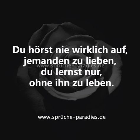 Du h  rst nie        Avada Cafe #Avada #Cafe #funny_positive_quotes #hörst #nie