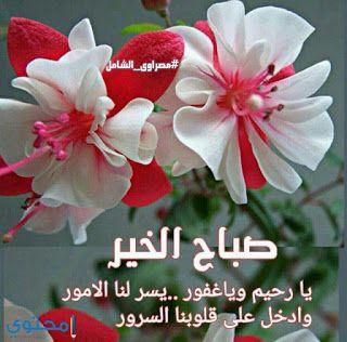 بوستات صباح الخير اجمل رسائل صباح الخير Beautiful Morning Messages Good Morning Arabic Morning Images