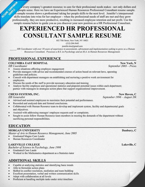 Experienced HR Professional Consultant Resume Sample - human resource management resume examples