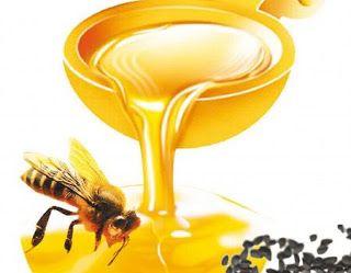 كيف يتم استخراج العسل Honey Condiments