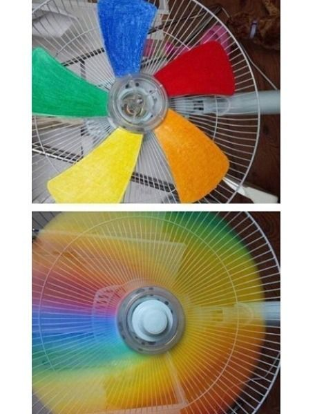 Cute Thing To Do To Your Fan