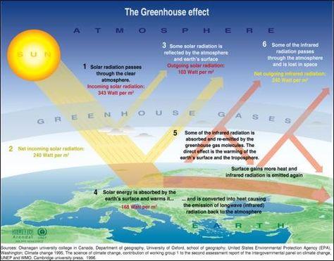 Essay greenhouse gases oracle dba resume bangalore
