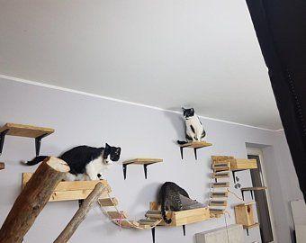 Cat Furniture Modern Heavy Duty Cat Wall Shelves Modern Cat