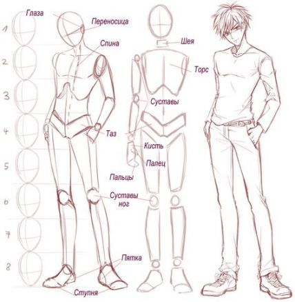 Drawing Body Male Anatomy Sketch 15 Ideas Anime Drawings Tutorials Manga Drawing Guy Drawing
