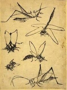 wasps Japanese Print Reproductions: Frogs snail dragonflies:  Fine Art Print