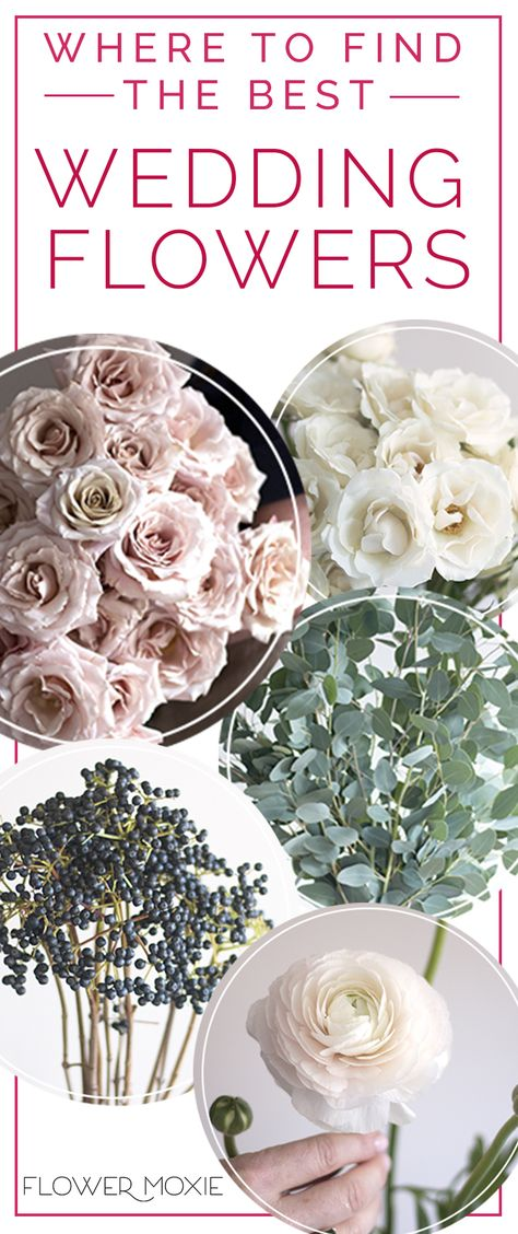 Diy Wholesale Wedding Flowers Wholesale Flowers Wedding Bulk