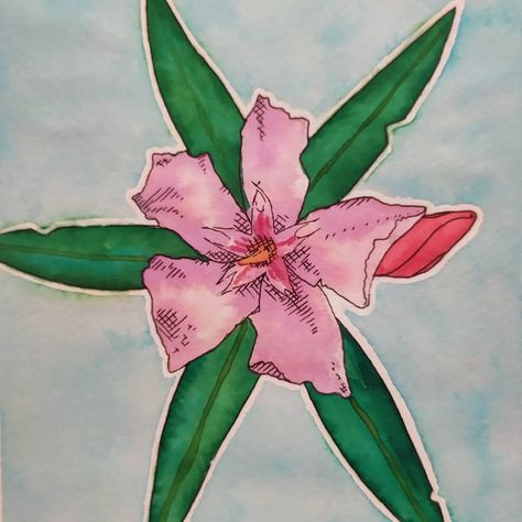 💐 I have just finished my new piece! I bought a new watercolor sketchbook ant this one is the first painting in it. * * * #leander #flower #art #myarts #watercolour #painting #flowerpainting #flowerart #pinkflower #kamillovandorart #aquarell #nature #flora #design #artist #paintings #flowers #leander #festmeny #vizfestek #virag