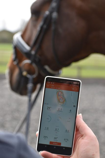 Equilab app review | Blog posts | Horse profile, Equestrian style