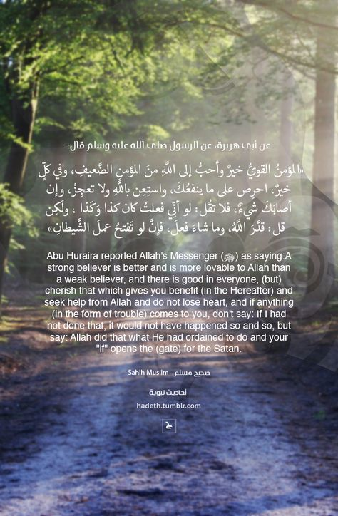 Desertrose عن أبي هريرة عن النبي صلى الله عليه وسلم قال المؤمن القوي خير وأحب إلى ال Quran Quotes Verses Islamic Quotes Quran Beautiful Quran Quotes