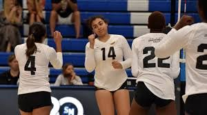 Image Result For Cal State Dominguez Hills Women S Volleyball Rylee Brown With Images Women Volleyball Cal State Women