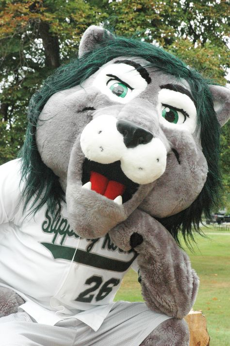 Rocky the lion.. our mascot.