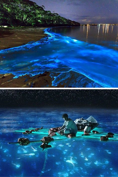Bioluminescent Bay! Puerto Rico is one of the easiest places to get to from the United States. Click through to see what you can't miss while visiting the island!