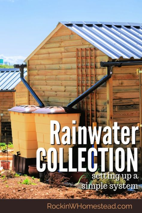 Ideas for Setting Up an Easy Rainwater Collection System 2 Ideas for Setting Up an Easy Rainwater Collection Ideas for Setting Up an Easy Rainwater Collection System Homestead Farm, Homestead Survival, Homestead Layout, Homestead Living, Survival Tips, Survival Skills, Rain Collection System, Living Off The Land, Living Off Grid