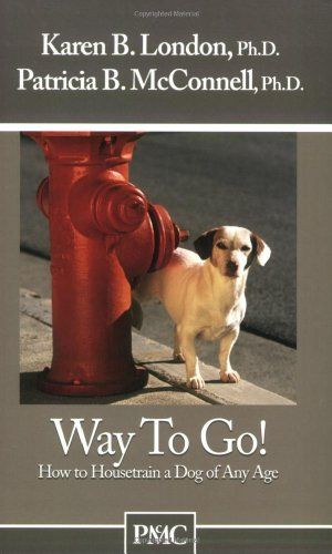 When Pigs Fly Training Success With Impossible Dogs Dog Books