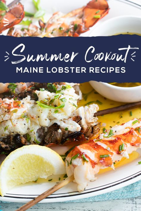 Maine Lobster elevates your summer cookout to the next level. Learn everything you need to know about cooking techniques, lobster products, and the best summer recipes that will earn you a place as barbecue royalty.  Lobster Dishes, Lobster Recipes, Fish Dishes, Fish Recipes, Seafood Recipes, Great Recipes, Cooking Recipes, Favorite Recipes, Healthy Recipes