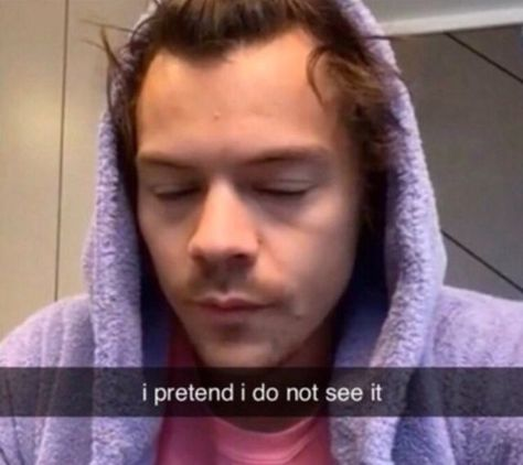 One Direction Humor, One Direction Pictures, I Love One Direction, Cute Memes, Stupid Funny Memes, Funny Relatable Memes, Harry Styles Memes, Harry Styles Pictures, Harry Styles Sad