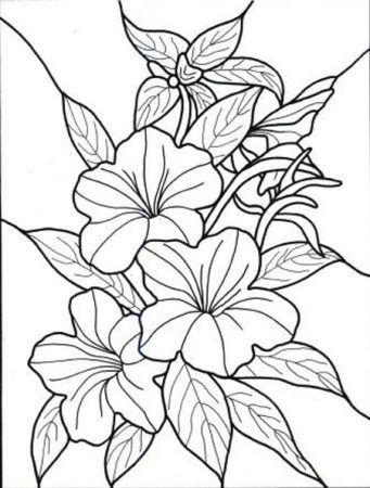 Popular Flowers Coloring Pages Malvorlagen Blumen Malvorlagen Kostenlose Ausmalbilder