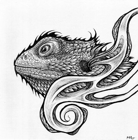 Bearded Dragon Illustration