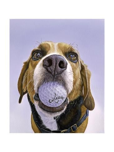 Giclee Print Callaway 3 By James Ruby 24x18in Dog Paintings