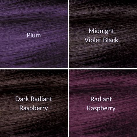 Which NEW ion™ Color Brilliance™ Violet Series Permanent hair ...