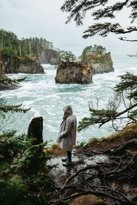 25 Amazing Stops On A Pacific Coast Highway Road Trip Itinerary - The Mandagies Olympic National Forest, National Parks, Places To Travel, Places To See, Travel Pics, Beach Travel, Pacific Coast Highway, Highway Road, Rialto Beach
