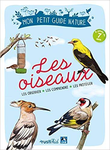 Les Oiseaux Les Observer Les Comprendre Les Proteger