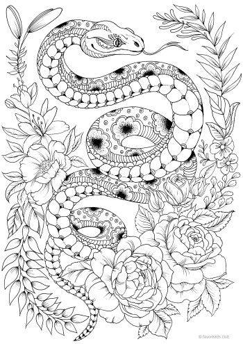Snake | Animal Coloring Pages for Adults | Snake coloring ...
