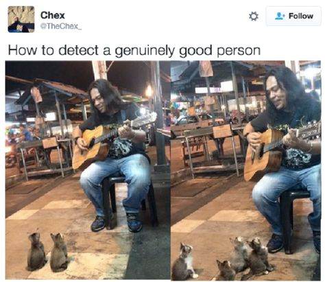 The perfect concert: | 27 Pictures Make You Way Happier Than They Should