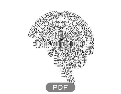 Brain Typogram Pdf In 2020 Brain Art Art Psychology Anatomy Art