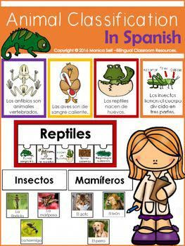 Animal Classification In Spanish Has Everything You Need To Teach Your Students About The Different Anima Animal Classification Animal Groups Spanish